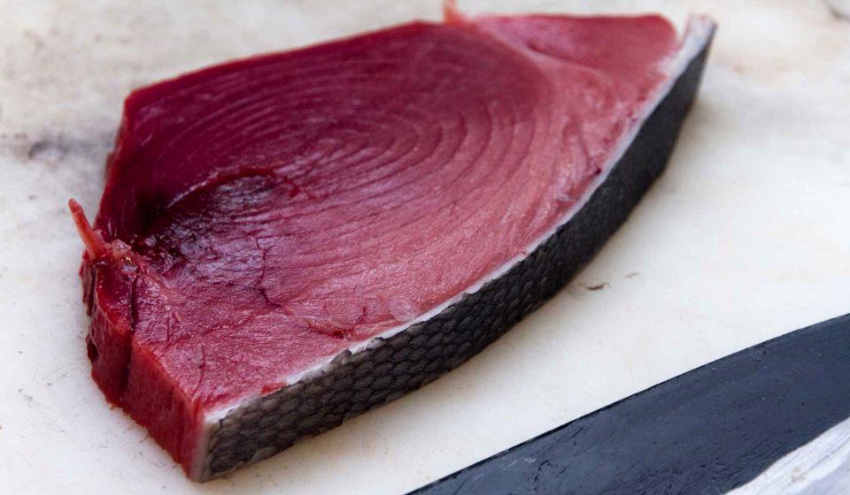 fish 03
